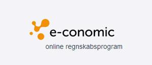 nyt-e-conomic-logo